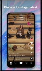 TikTok Mod Apk Download For All Devices | Ad-Free Version 4